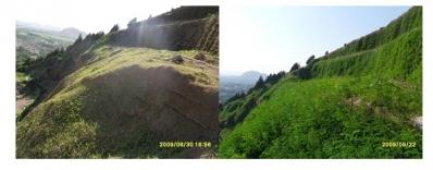 边坡绿化景观